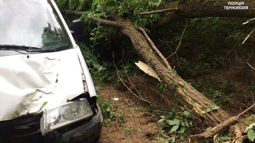 Поблизу Тернополя п'яний водій в'їхав у дерево