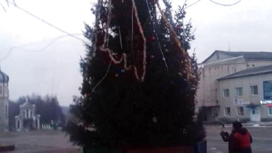 Фото дня: у Козові встановили головну ялинку міста