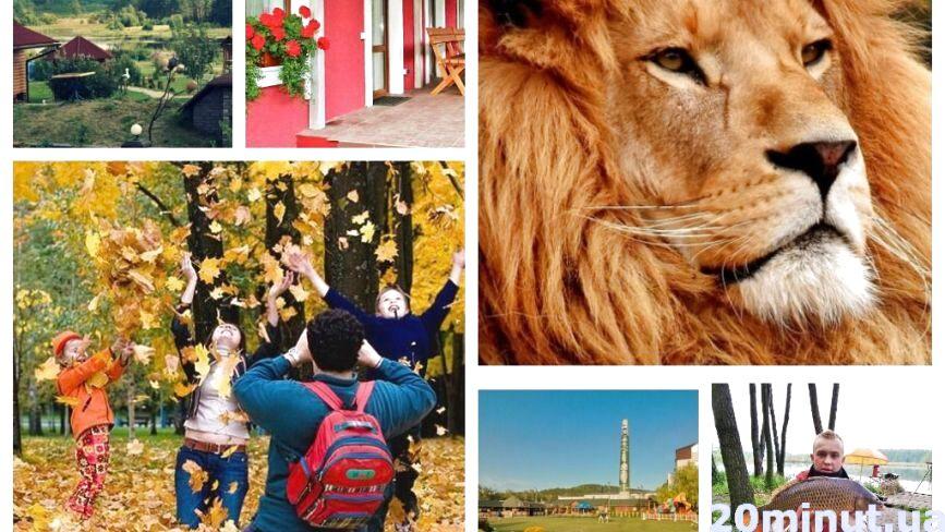 Куди поїхати відпочити на Тернопільщині: бази відпочинку, ціни та фото