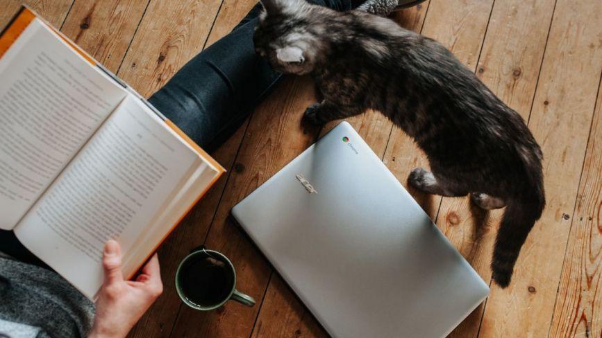 ТОП-5 книг, які допоможуть віднайти баланс між роботою, сім'єю та особистим