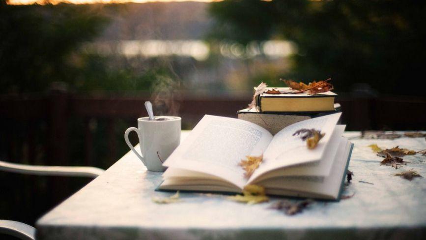 Книготерапія для дорослих: ТОП-5 коротких романів про любов