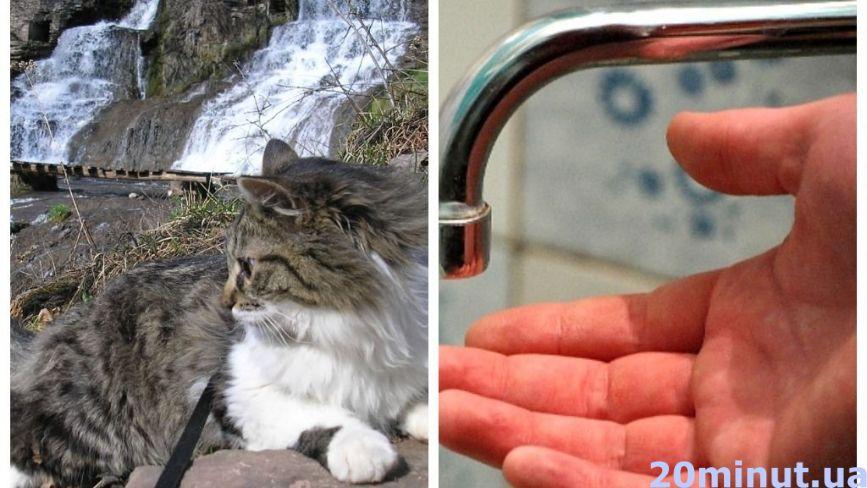 Водойми пересихають: чи вистачить води для тернополян та що буде зі Cтавом