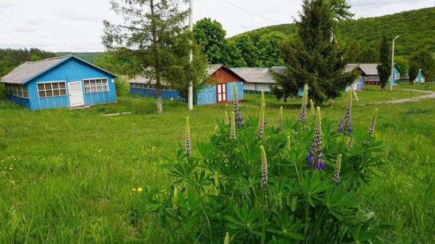 На Тернопільщині перевіряють, чи готові до роботи дитячі табори: які умови забезпечать? (ФОТО)