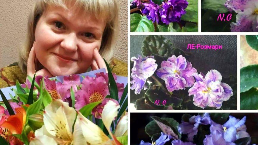 Тернополянка виростила понад 300 видів фіалок та поділилась секретами квітів