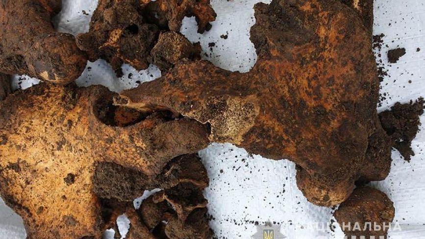 У селі на Тернопільщині знайшли людський скелет (ФОТО)