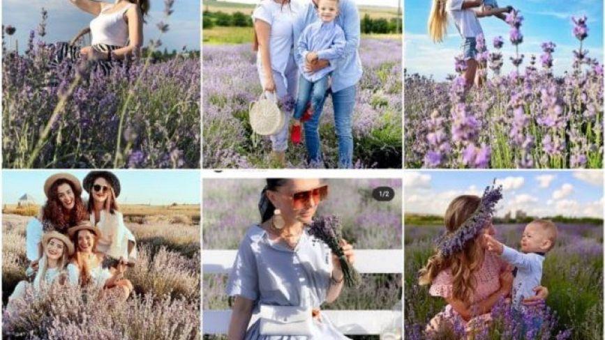 Лавандовий рай: ТОП-10 фото із квіткового поля, які тернополяни опублікували в Instagram (шукайте своє)