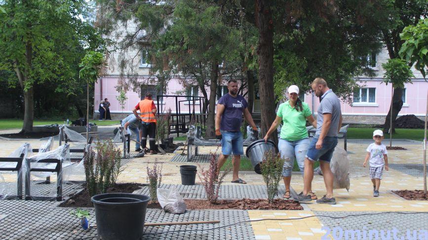 На вулиці Качали у новому трансфер-містечку висаджують дерева (ФОТО ДНЯ)