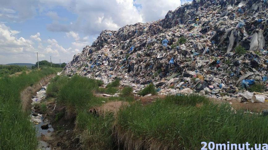 Мертві лелеки та страшенний сморід. Що ще ми побачили біля Малашівського сміттєзвалища? (ФОТОРЕПОРТАЖ)