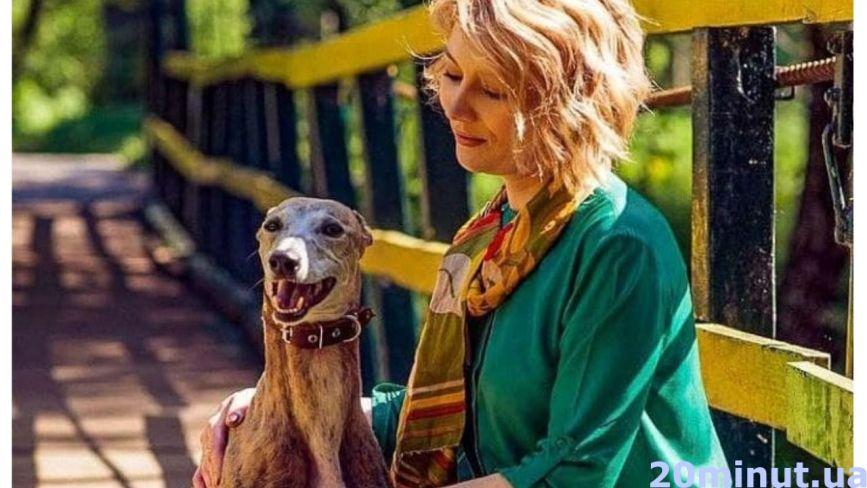 Де в Тернополі можна вигулювати собак, чи можна з ними в таксі? Що треба знати господарям