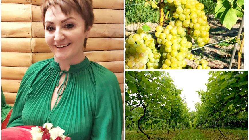 Сімейна справа в пам'ять про тата та чоловіка: де на Тернопільщині є виноробня з гектарами виноградників