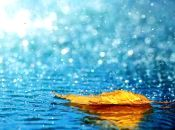 Погода у Тернополі: 24 вересня, дощ, +11°