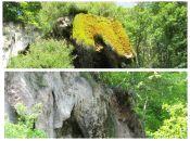 """""""Шкода, це була перлина!"""" На Тернопільщині вже не побачимо знаменитого водоспаду """"Дівочі сльози"""""""