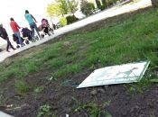 Тернополянка вимагає створити місця для вигулу тварин