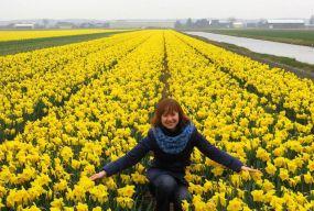 Як живуть українці у Нідерландах