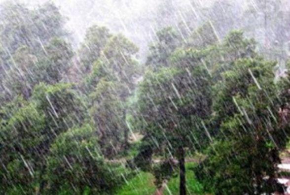 Погода у Тернополі: 18 травня, дощ,  +15°