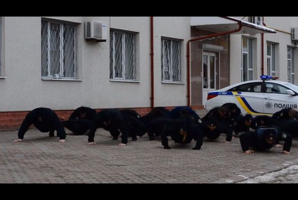 #22PushupChallenge: тернопільські патрульні долучились до флешмобу