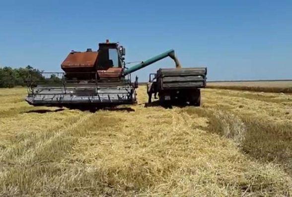 Біля Тернополя через несправний комбайн горіло поле