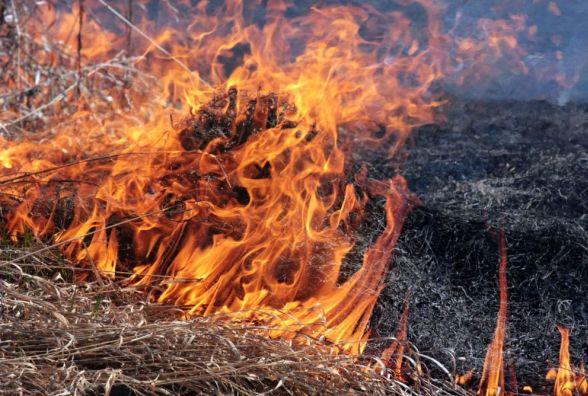За спалювання сухої трави штрафуватимуть