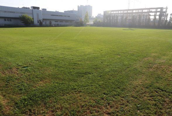 Футбольне поле у парку «Топільче» облаштують до вересня