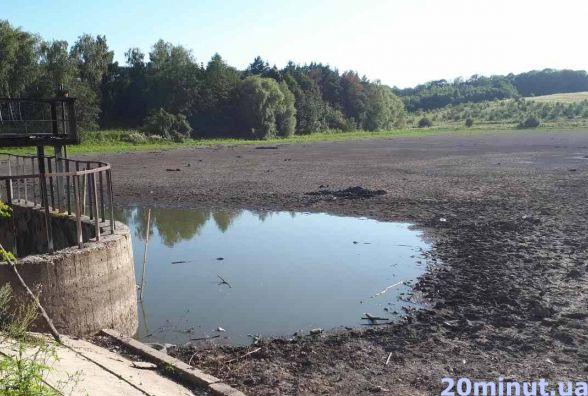 Щоб відновити Петриківський став потрібно більше 10 млн грн