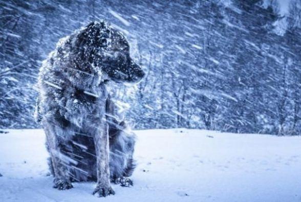 Синоптик попереджає про складну погоду в Україні найближчими днями