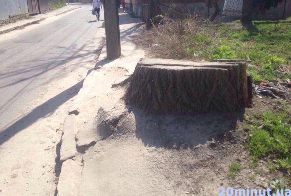 Величезний пеньок посеред тротуару люди змушені обходити дорогою.  Забрати перешкоду неможливо, кажуть комунальники