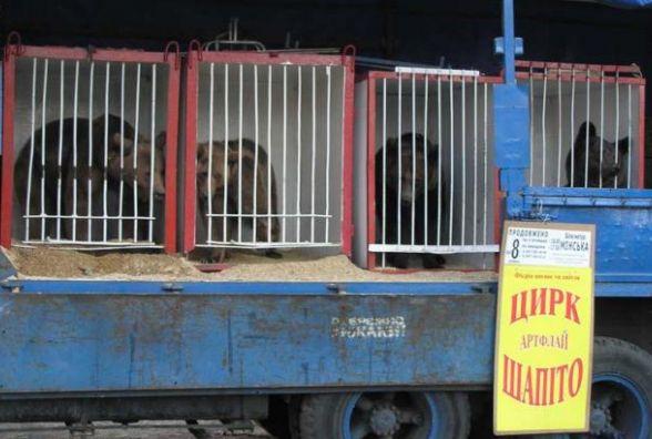 Цирк до Тернополя приїде, але за дотримання певних умов