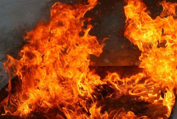 Березовиця задихається від диму і смороду, бо підприємець палить кістки