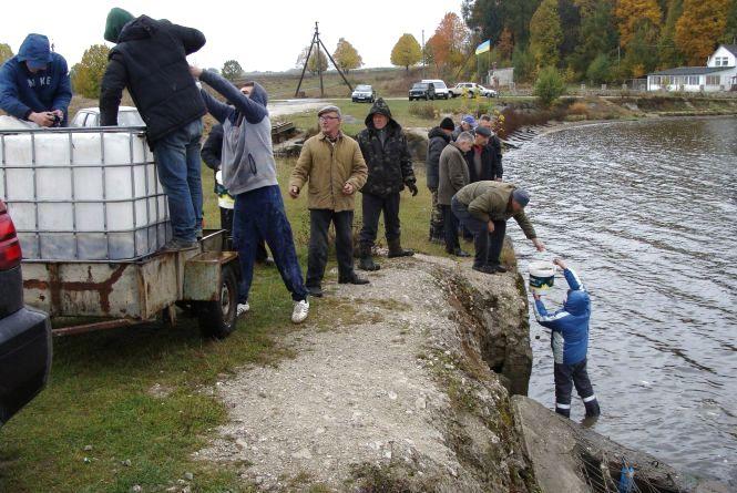 На Тернопільщині громада зробила зразковий ставок для риболовлі