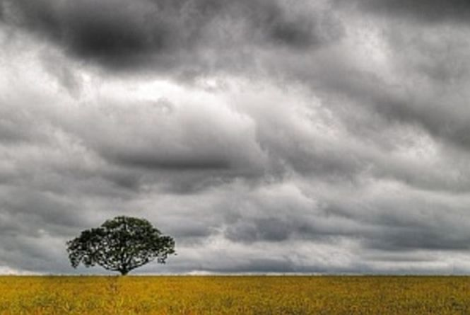Погода у Тернополі: 20 жовтня, хмарно,  +15°