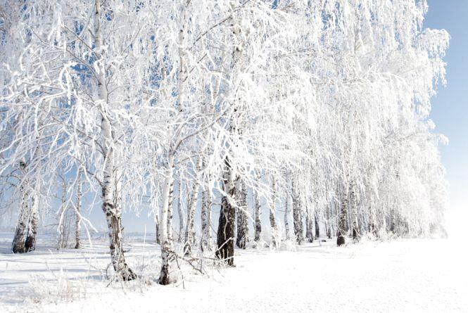 Погода у Тернополі на 18 листопада: сніг, +3