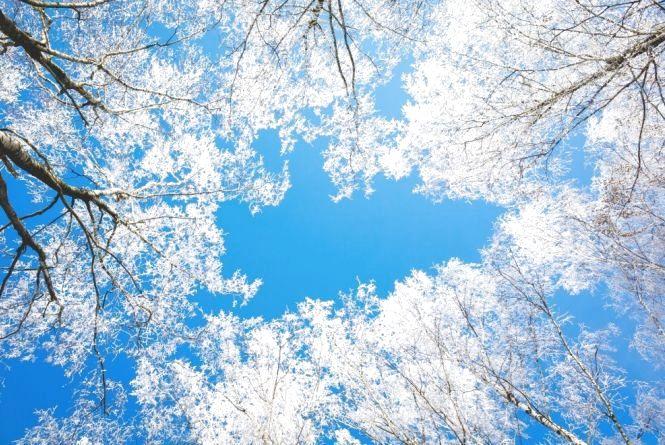 Погода в Тернополі на 7 січня: сонячно, -15°