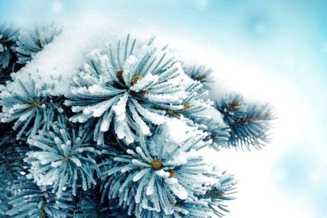 Погода в Тернополі на 9 січня: сніг, -11°