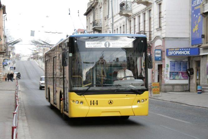Чи замінять маршрутки тролейбусами - міськрада відповіла на петицію
