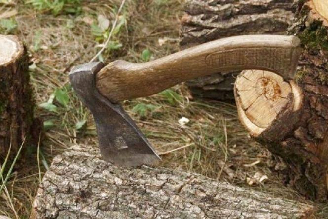 На Тернопільщині чоловіки незаконно рубали дерева