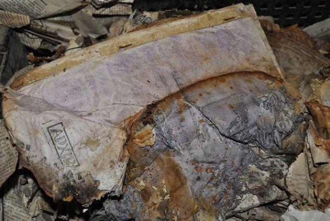 Схрон з унікальними документами ОУН знайшли на околицях Теребовлі