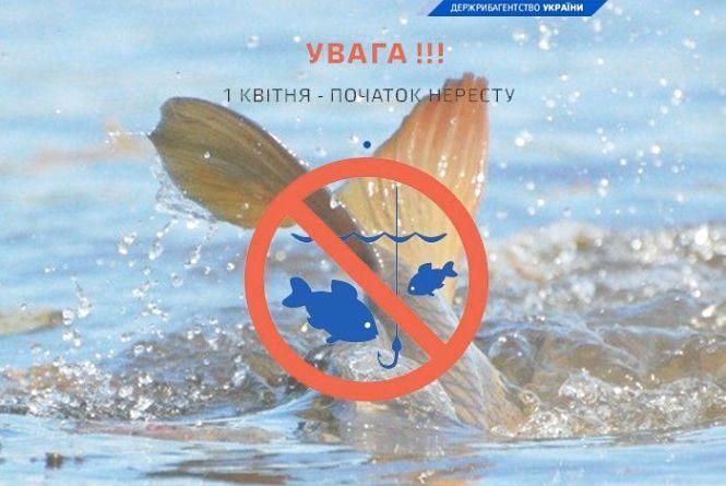 На Тернопільщині стартувала заборона на вилов риби