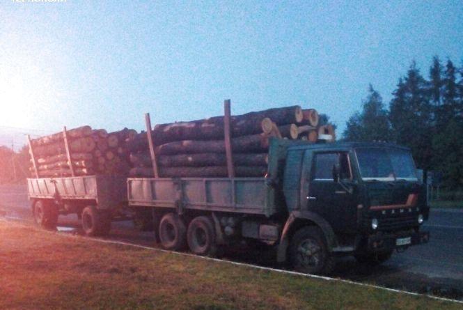 Патрульні зупинили вантажівку з деревиною без чіпів