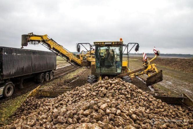 На Тернопільщині будуть штрафувати за забруднення доріг