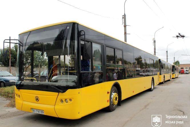 У Тернополі планують закупити 40 міських автобусів