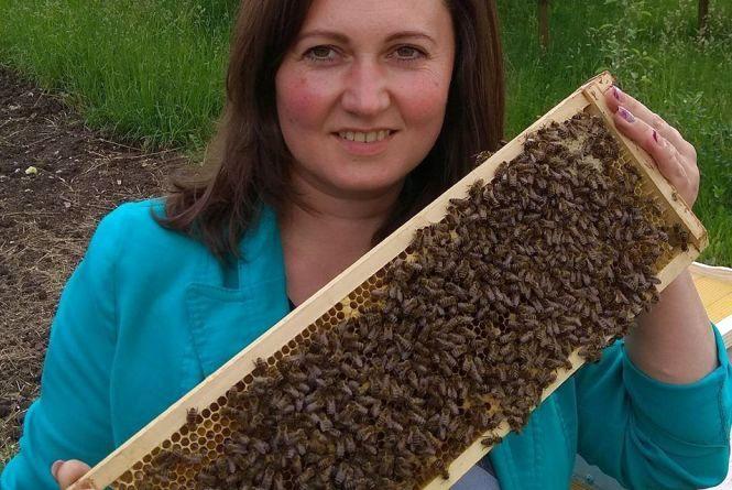 Бджоли допомогли вилікувати спину