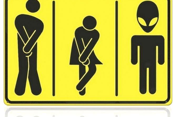 Куди в тернопільських парках ходити в туалет