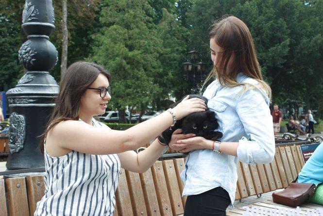 Фото з чорним котом у п'ятницю 13. Чи забобонні тернополяни?