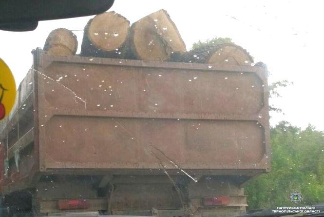 На Тернопільщині зупинили автомобіль з нелегальною деревиною