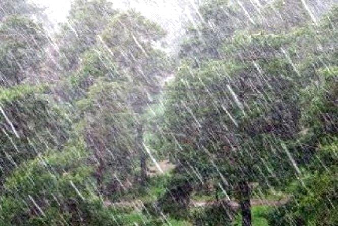На Тернопільщині очікується дощ, грози, подекуди град