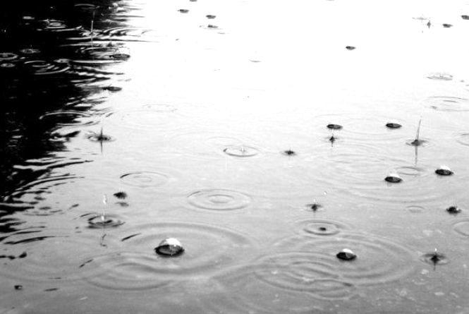 Погода у Тернополі: 1 серпня, дощ, +27°