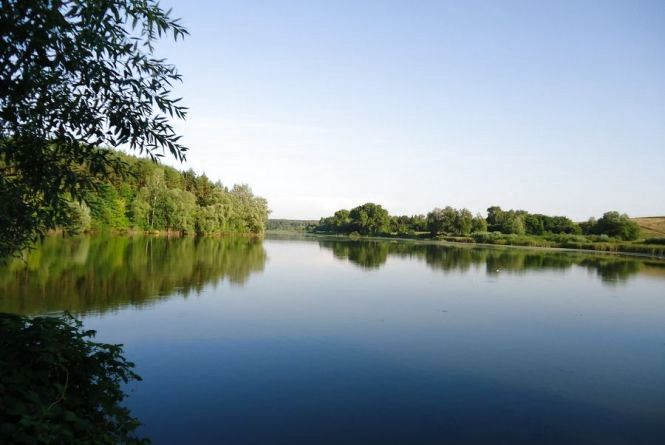 Кременчанин утопився в ставку поблизу села Іква