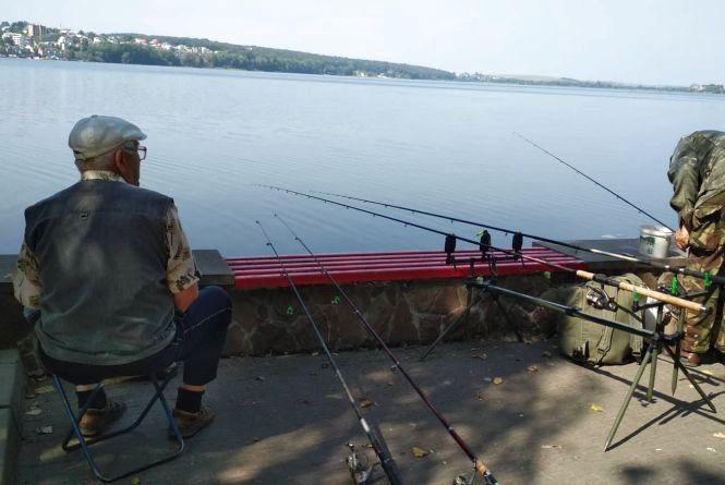 У Тернопільському ставі рибалки помічають хворих рибин