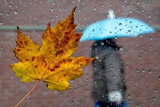 Тепла осінь закінчується. На Тернопільщині похолодає