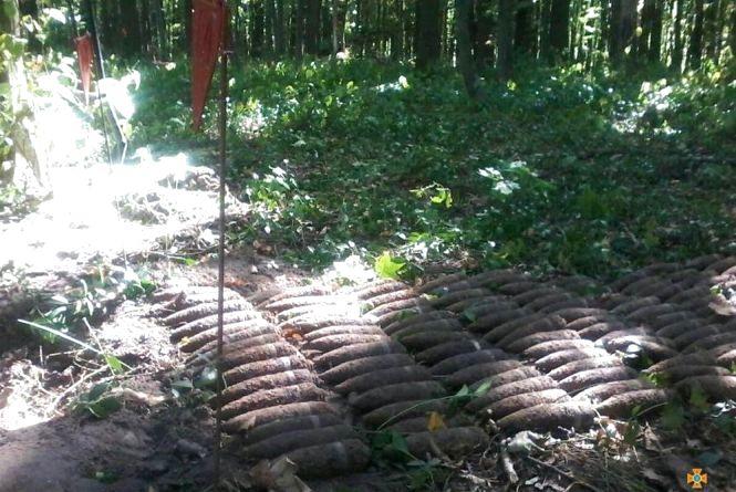 У Шумському районі виявилиаж 350 артилерійських снарядів